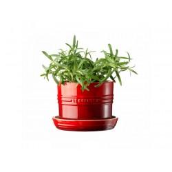 Pot à Aromates Rouge Cerise - Le Creuset