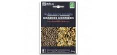Sachet Graines à Germer Lentille Bio 50 g