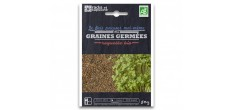Sachet Graines à Germer Roquette Bio 50 g