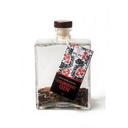 Mengeling om Zelf Gin te Maken - Strawberry Gin - Quai Sud