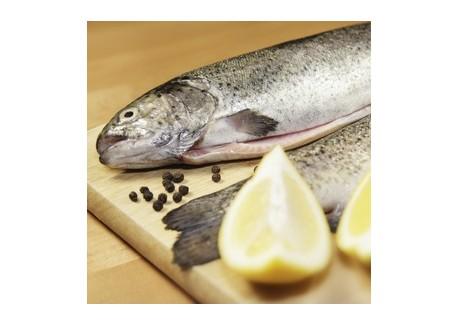 Fish and Seafood 3