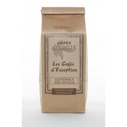 Café en Grains Guatemala Antiga 500 g  - Cafés Looze