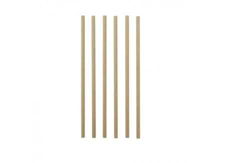 Pailles en Carton 48 pcs 19,5 cm  - Point Virgule