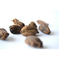 Noix de muscade 35 g  - Comptoir Africain