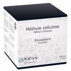 Methyle Cellulose 100g  - Kalys