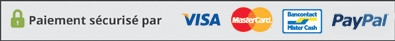 Visa, MasterCard, Bancontact Mister Cash, Paypal